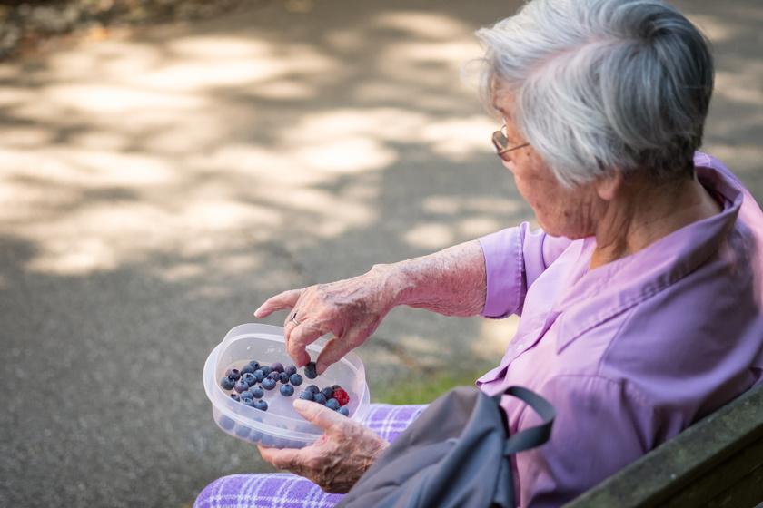 idős nő fekete áfonya