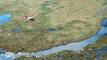 Az amerikai kormány engedélyezte a gáz- és olajkitermelést Alaszka északi-sarki területein