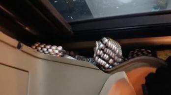 Opioid fájdalomcsillapítóval volt kitömve egy szerb kamion fülkéje