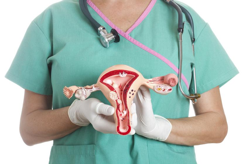 nőgyógyászat1