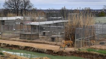 Végleg bezár a Tiger King-sorozatban elhíresült állatkert
