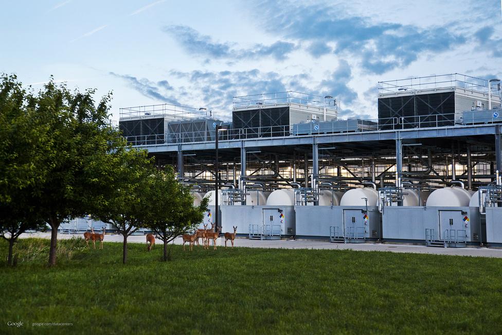 Council Bluffs, Iowa állam. A Google 2007-ben vette meg a hatvanezres kisváros egykori autósmoziját, hogy a területén óriási szervertermet építsen fel. A környékbeli erdőkben élő szarvascsordák hamar odaszoktak a szerverfarm közelébe. A központot szinte teljes egészében egy közeli szélerőmű látja el energiával.