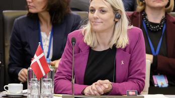Felfüggesztették a dán hírszerzés vezetőjét