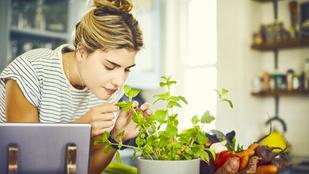 5 fűszernövény, amelynek ott a helye a konyhádban