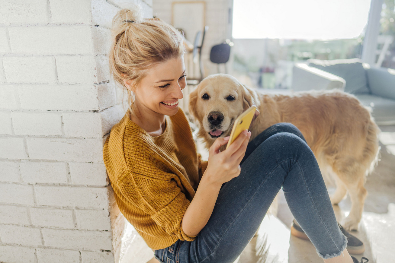 lany-telefon-kutya