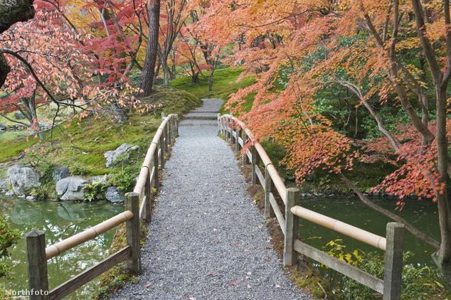 A Sento császári palota kertje Kiotóban, Japánban