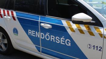 Bűnügyi felügyeletből akart szabadulni a Pest megyei férfi, nyakon szúrta a rendőrt