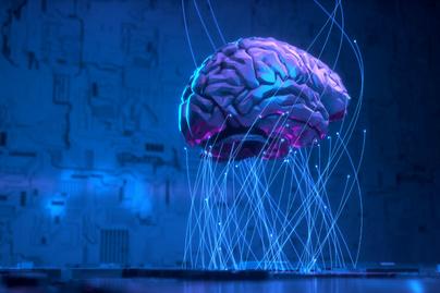 emberi agy