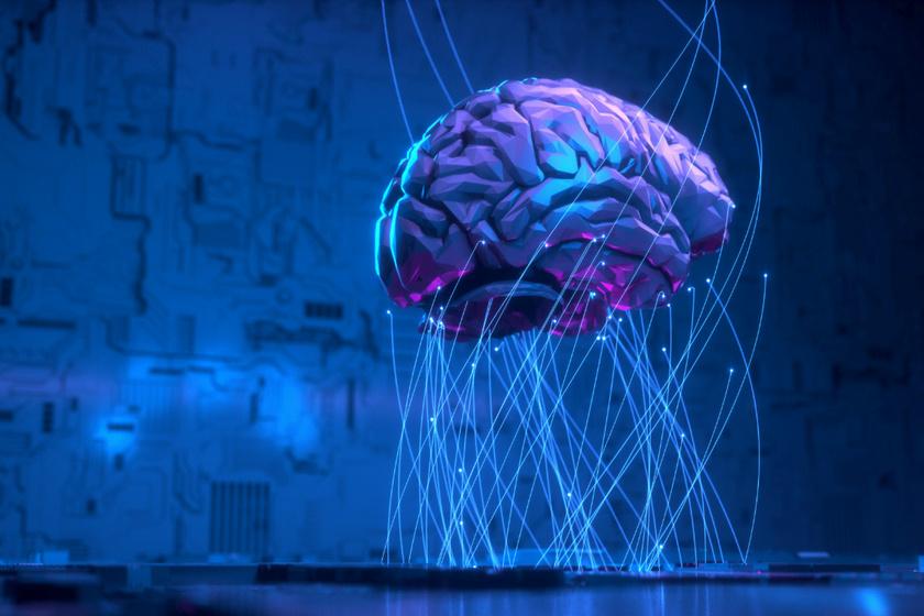 8 kvízkérdés az agyról, amire nem is olyan egyszerű válaszolni: tudod, mennyi adatot képes tárolni?