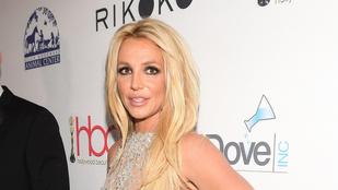 Britney Spears szeretné, ha nyilvánossá tennék gyámsági tárgyalását