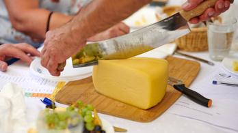 A legjobb magyar sajtok már a világ élvonalában is megállják a helyüket