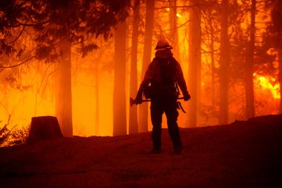 kalifornia-erdőtűz5
