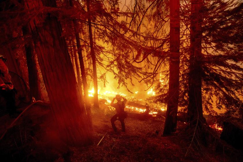 Már több hete pusztítanak az erdőtüzek Kaliforniában, és bár rengeteg tűzoltó próbálja megfékezni a lángokat, egyre nagyobb területeket érint a katasztrófa.