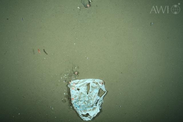 Műanyag hulladék a tenger mélyén