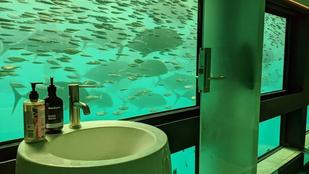 Nézzen körül ön is Ausztrália első vízalatti hoteljében!