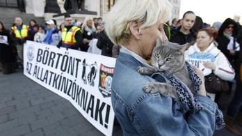 Svájc és Lengyelország az élen, Magyarország sereghajtó az állatkínzás elleni harcban