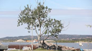Feljelentést tesz a Velencei-tó beépítése miatt az LMP