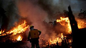 Környezeti vészhelyzetet rendeltek el Brazíliában
