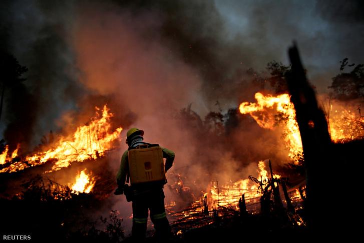 Brazil tűzoltóság tagja az Amazon dzsungelben pusztító tűznél 2020. augusztus 11-én