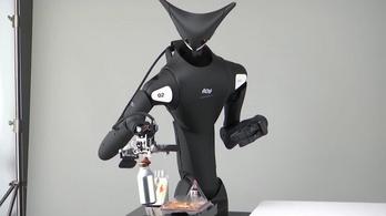 Kétméteres robotok dolgoznak a tokiói boltokban