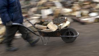 Tűzifavásárlást segítő piactér nyílt az interneten