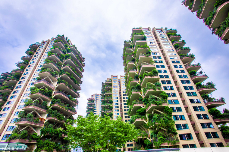 A 2018-ban épült 8 felhőkarcoló mind a 826 lakásának van már tulajdonosa, ám, finoman fogalmazva, nem mindenki költözött be a lakásába