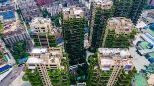 Kína exkluzívnak szánt növényes felhőkarcolóját ellepték a szúnyogok