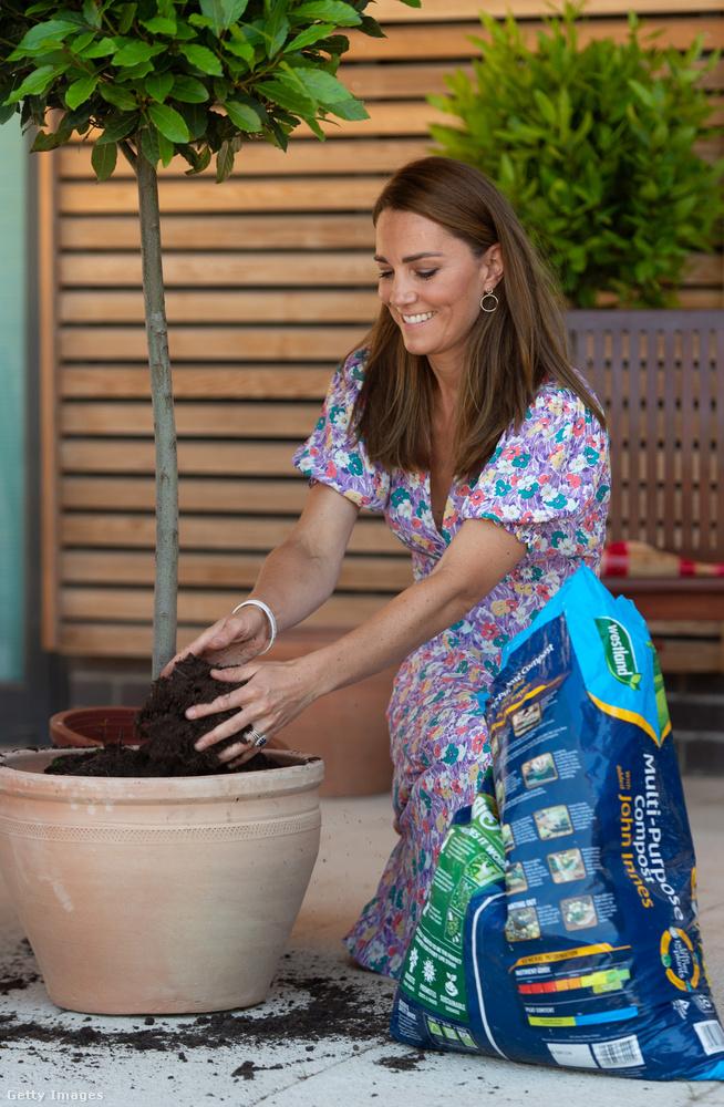 Így már érthető Katalin ruhaválasztása! Nemcsak mosolyognia kellett, meg gyerekekkel foglalkoznia, egy kis kertészkedés, faültetés is a napirendi pontjai között szerepelt