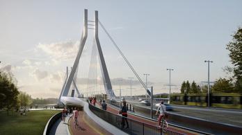 Galvani-híd, pesti oldal: mi lesz veled, Kiserdő?