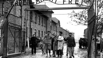 Riasztó, milyen keveset tudnak az amerikai fiatalok a holokausztról