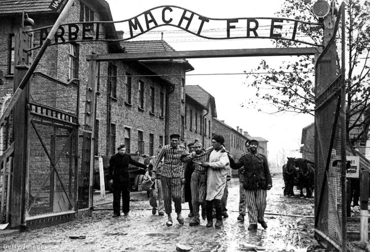 A koncentrációs tábor túlélőit vezetik át az auschwitzi tábor kapuján 1945-ben