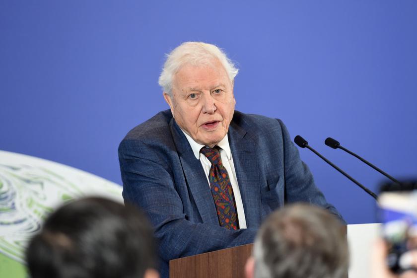 David Attenborough a klímaváltozás veszélyeiről beszélt 2020 februárjában a UN Climate Change elnevezésű konferencián.