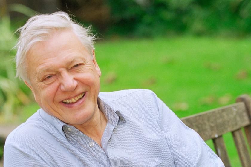 David Attenborough a világ leghíresebb természettudósa: így néz ki 94 évesen