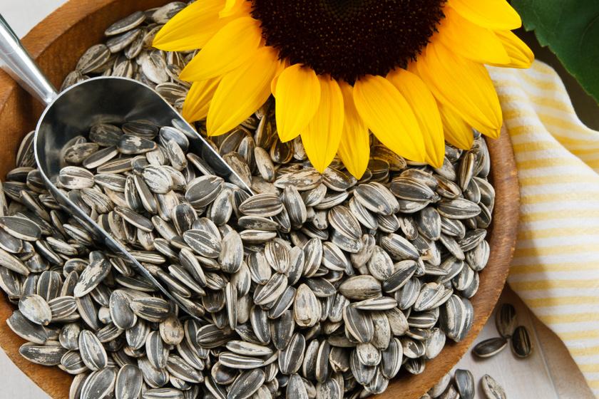 100 gramm napraforgómag 35 milligramm E-vitamint tartalmaz. Mindemellett fehérje- és rosttartalma miatt is jó választás, ha valami ropogtatnivalóra vágysz.