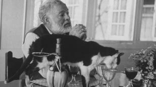 Híres írók állatai: Byron szobatársa például egy medve volt