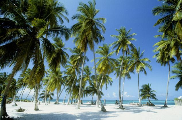 Dominikai Köztrásaság