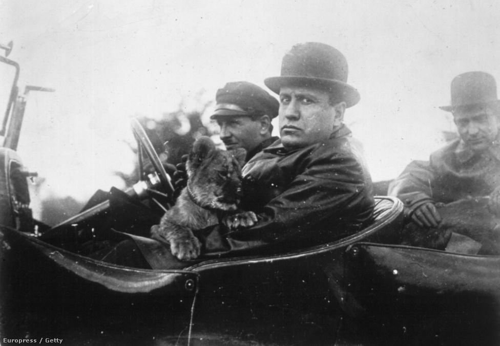 Mussolini kocsikázni megy Ras nevű oroszlánkölykével, amit Aldo Finzi miniszterétől kapott, aki egyike volt a fasiszta párt kilenc zsidó tagjának. Finzi 1921-ben csatlakozott Mussolinihez, akinek a barátja és egyik legközelebbi tanácsadója lett. A hatalomátvétel után belügyi államtitkár-helyettes volt, de egy szocialista ellenzéki meggyilkolásának érintettjeként lemondatták. 1938-ban mentességet élvezett a faji törvények hatálya alól, de 1942-ben kizárták a pártból. 1943-tól partizánként harcolt, de hiába: a németek elfogták, és kivégezték.
