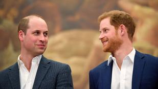 Vilmos és Harry herceg már beszélnek egymással, de messze még a teljes családi béke