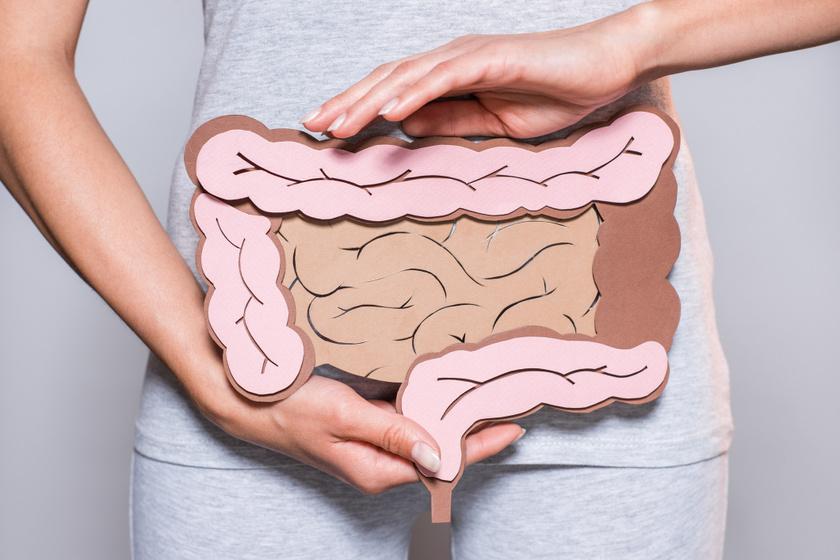 Villámkvíz az emberi testről: tudod, milyen hosszú a vastagbél?