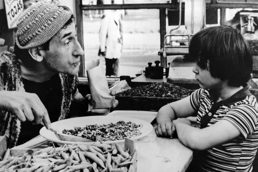 Híres magyar gyerekfilmek és gyereksorozatok kvíze: hogy hívták a Keménykalap és krumpliorr főszereplőjét?