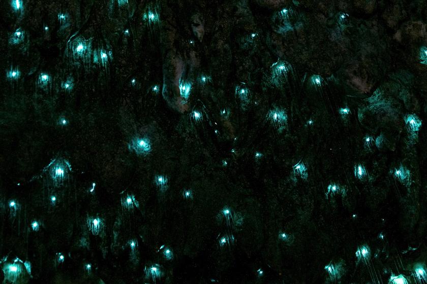 A barlang, ami úgy fénylik, mint a csillagos ég: különös jelenség áll a hátterében