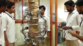 Kókuszfára mászik az indiai robot