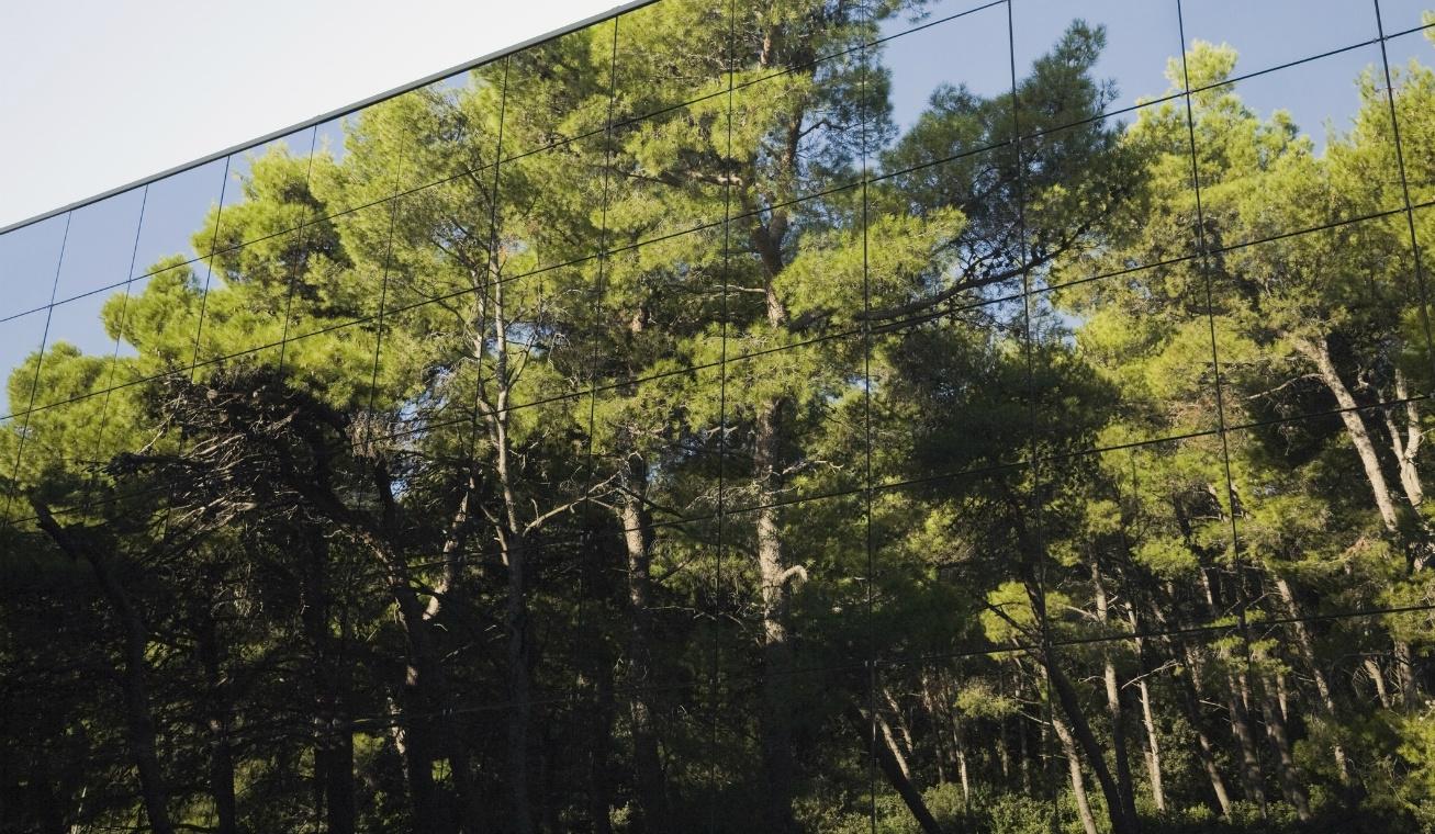 urvan forest