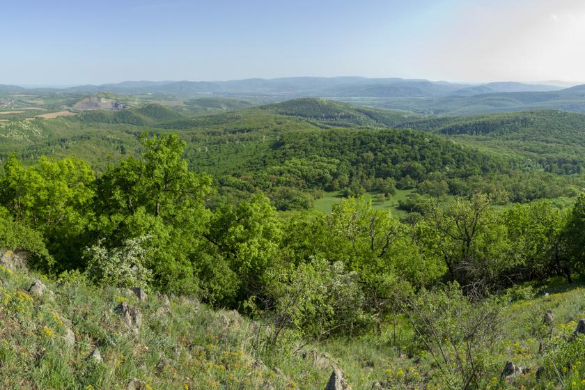 A Börzsöny elfeledett várai az erdők mélyén bújnak meg: gyönyörű túrautakon érhetők el