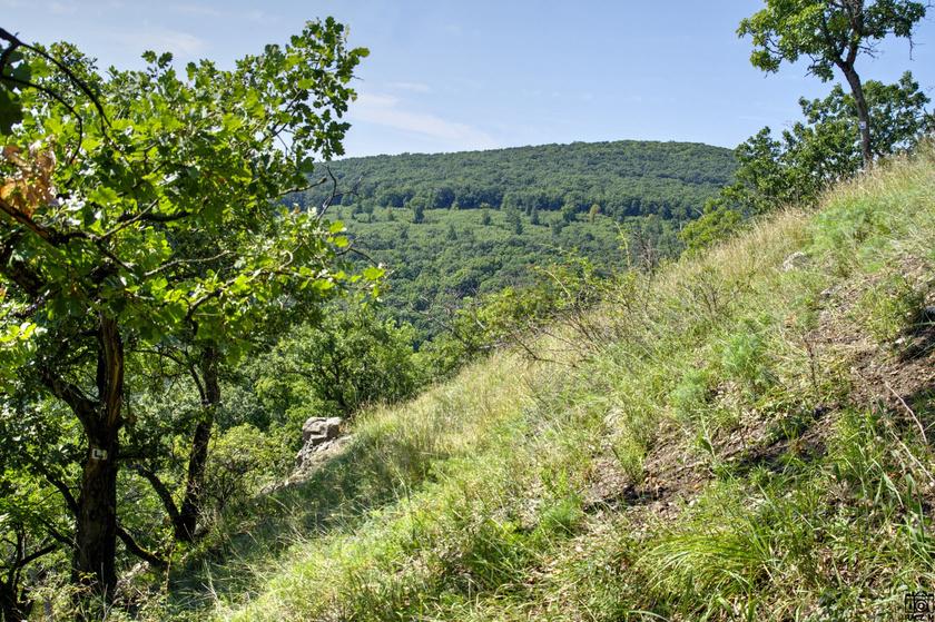 Zuvári-hegy és a Zuvár alig látható romjai.