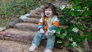Miért hisztizik a gyerek? Nem biztos, hogy azért, amit te gondolsz