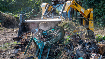 5,5 ezer köbméternyi hulladék borította a Pilisi Parkerdőt