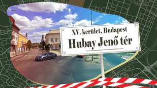 Ki az a Hubay Jenő, akiről utcát és teret is elneveztek?