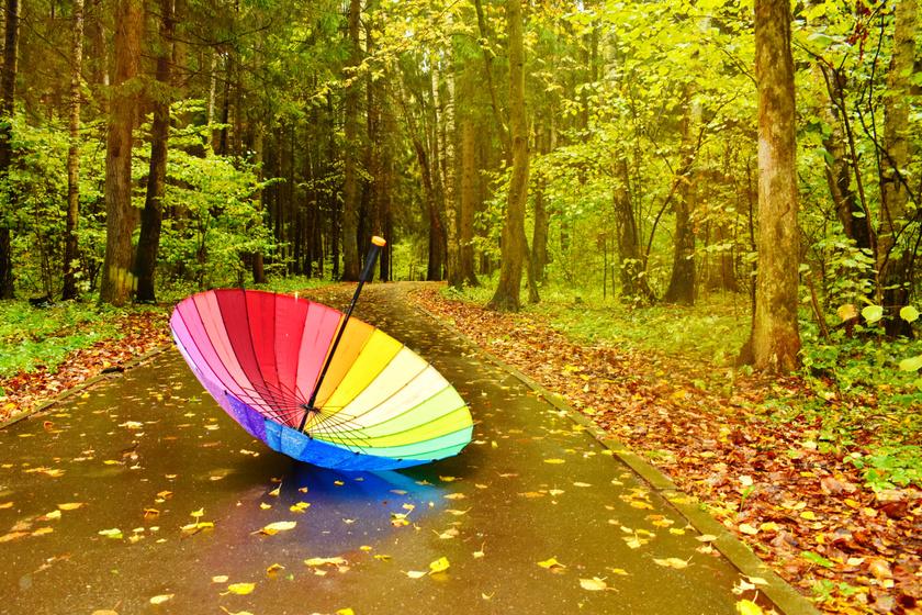 Beköszöntött az igazi ősz - Záporok és napsütés is vár ránk a héten