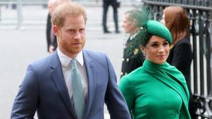 Harry hercegék realityszereplést vállaltak a Netflixnél